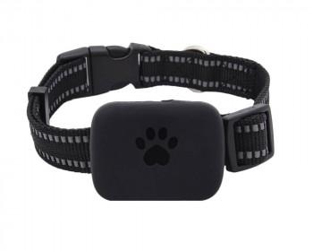 GPS ошейник универсальный для маленьких собак и кошек BW21